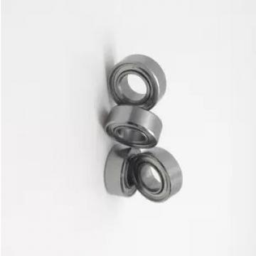 NACHI NSK IKO Koyo SKF Tapered Roller Bearing/Taper Roller Bearing (30202 30203 30204 30205 30203 30207 30208 30209 30210 30302 30203 30317)