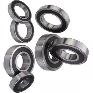 Miniature Ball Bearings 608, 607, 606, 605, 604, 603, 602, 626, 628 Zz 2RS C3