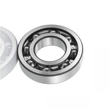 Nu2204etvp2/C3 Cylindrical Roller Bearing P5 Quality