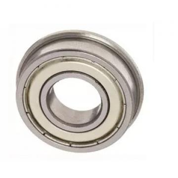 SKF/NSK/FAG/NTN Bearing P5 Rubber Impact Roller with High Quality Rubber Discs