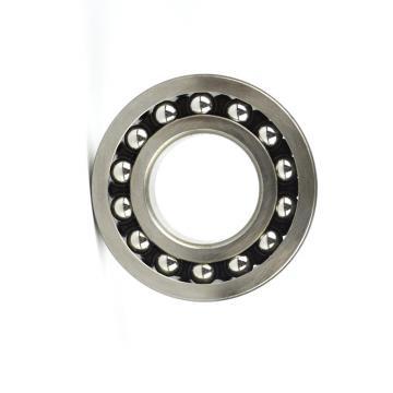 NTN Ball Bearing Ts2 Ec 6202